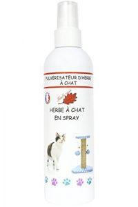Feuille rouge – Herbe à Chat en spray – 125 ml – Cataire – Catnip