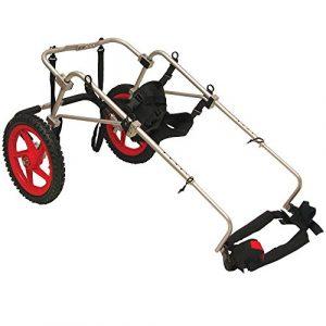 Meilleur ami mobilité Chien pour fauteuil roulant