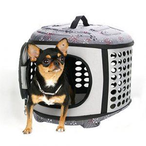 Petcomer Cage de Transport pour Chien Chat Animal de Compagnie Panier Pliable Portable en EVA Sac à Main