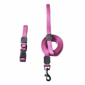 Corde de traction, Laisse chien chaîne pour animaux de compagnie tissage de nylon en plein air en cours de formation de formation mode douce confortable confortable durable multi couleur en option (bl