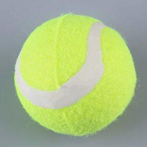 Nouvelle Balle de Tennis pour Chien Pet Petsport Thrower Chucker Launcher Jouet Jouet ToGames-FR