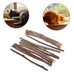 ZOUCY 10 Pièces Naturel Bâton Polygonum Cataire Cat Jouets Nettoyage des Dents des Collations Molaires Pures