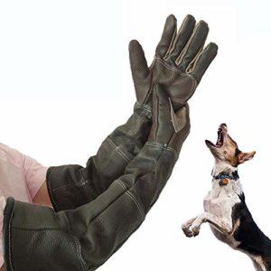 Goodtimera Gants d'animaux Ultra Longs pour Chiens, Chats et perroquets