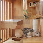 Maison Cat Cat House Large Lodge en Bois Chaise Longue Lit Dormant Maison Activity Center Toy Grimpeur avec Porte Escape Centre d'activités Cat (Couleur : Natural, Size : 60x90x200cm)