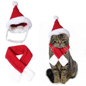 Mignon chapeau de Père Noël et écharpe costume de costume rouge de Noël habiller (Taille du cou L-Fit à 14,1 «)