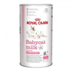Royal Canin–Babycat Lait 300g
