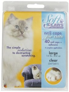 SOFT CLAWS Kit de Protège-Griffes pour Chats Adultes Transparent – LARGE