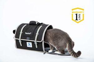 Touchcat sur Toile Cat Sac à Dos