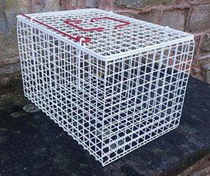 Generic Tic avec revêtement en Maille métallique Ted Chat Blanc Panier Blanc recouvert de Plastique R Fil M de Transport Pet à Panier