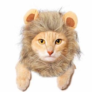 JDYW Animal de Compagnie Costume Perruque De Crinière De Lion pour Chat Chien Costumes d'halloween Noël Drôle S'habiller avec Les Oreilles