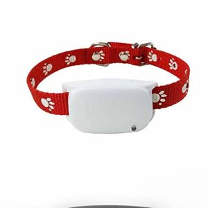 Localisateur d'animaux de Compagnie GPS Tracker Dog Locator Anti-Lost Smart Pet GPS Collier Tracker pour Les Animaux de Compagnie, Anti-Perdu, localisateur, Geofence,White