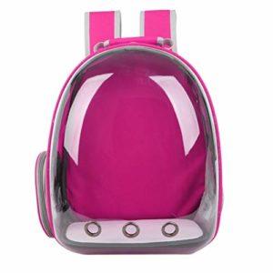 POPETPOP Portable Chien Chat Chien Chiot Sac à Dos Transporteur Bulle 360 degrés Transparent Espace Sac à Dos Capsule