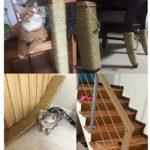 Yangbaga Corde de Sisal Naturel 6mm Remplacement Cordage Accessoire DIY Poteau, Idéal pour Griffoir, Balles Jouets en Sisal Gratuit (20m, Naturel)