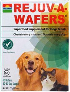 Soleil Chlorella- Rejuv-a-wafers- chlorelle et Eleuthero Complément Alimentaire pour Chiens et Chats (60gaufrettes)
