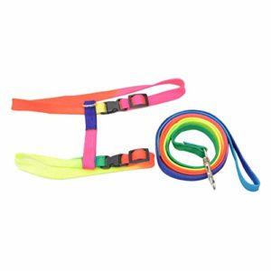 HUANGMENG Laisse de harnais réglable en nylon coloré for chat, laisse, collier, laisse, longueur: 120 cm HUANGMENG