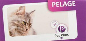 Pet-Phos félin spécial pelage 36 comprimés