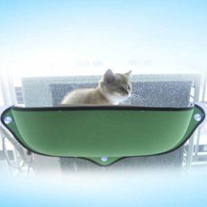 ZTH Hamac de fenêtre 2 PCS Chat for lit de Chat Amovible for Animal de Compagnie Hamac hamac de lit de fenêtre Chat (Vert) (Color : Green)