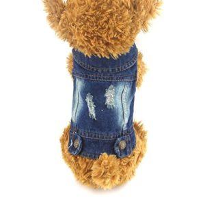 DOGGYZSTYLE Gilets pour Animal Domestique Chien Veste en Jean Capuche Chiot Veste pour Petits Chiens de Taille Moyenne, M, Bleu