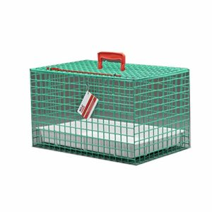 MDC Cat Carrying Basket, Green