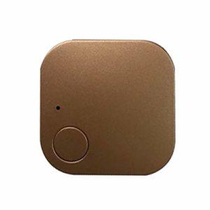 WMPRTT Mini traqueur GPS étanche pour Animaux de Compagnie Chien Chat Clés Portefeuille Sac Enfants GPS Tracker Animaux Finder Équipement (Or2)