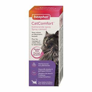 BEAPHAR – CATCOMFORT – Spray calmant aux phéromones pour chat – Réduit le stress et les problèmes comportementaux sans dépendance ni somnolence – Prêt à l'emploi – Flacon 30 ml = 214 pulvérisations