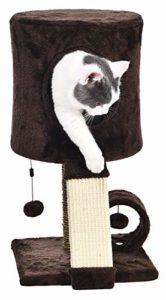 AmazonBasics Arbre à chat avec abri perché – 30,5 x 30,5 x 51 cm, Marron foncé