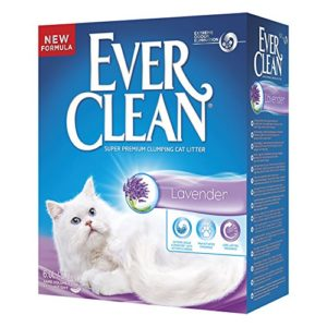 Ever Clean pour Chat Lavande