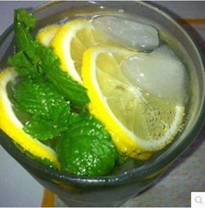Graines de menthe anti-moustique parfum de citron comestible graines de cataire 300 comprimés-300 cataire