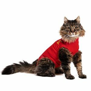 Medical Pet Shirt Kat XXXXS rood