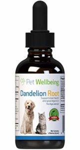 Pet Wellbeing Racine -Dandelion Le Foie De Chat De Soutien Digestif – 2 oz