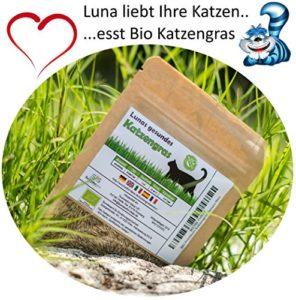 Prime Graines d'herbe chat BIO Lunas ♥ – 1 sachet avec mélange de graines 90g pour environ 45 pots d'herbe à chat prête à l'emploi dans un sac refermable