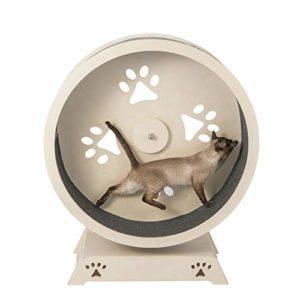Roue de fitness pour chat, jouet en forme de grande roue de tableau de grattage pour chat, meubles de roue à eau pour chat pour chatons, chats et animaux de compagnie, couleur bois naturel, 3 taille