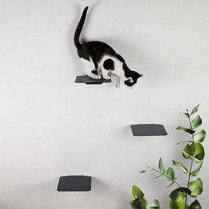 LucyBalu Lot de 3 escaliers pour chat jusqu'à 10 kg avec coussinets en liège Anthracite 18 x 18 cm