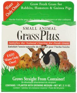 Miraclecorp/Gimborn Petite Herbe pour Petits Animaux 60 g