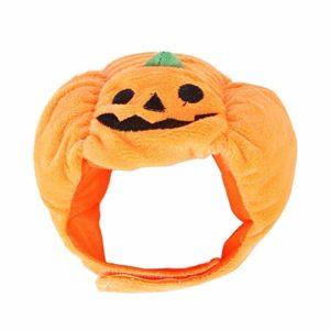 Pet Halloween citrouille Hat Robe Teddy Up Coiffures Oreilles Cat Chat Coiffures Vêtements pour Chien