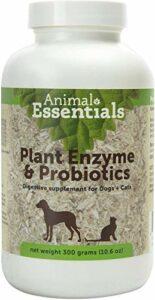 Animal Essentials Enzymes et Plantes Probiotiques pour Chiens et Chats 300 Gram