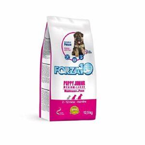 Force 10 Chien Puppy Junior M/L Poisson 12,5 kg