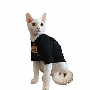HCYD Automne et Hiver Sphinx Chat Chat sans Poils t-Shirt en Pur Coton Fournitures pour Animaux de Compagnie Blanc
