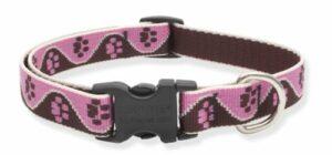 Lupine Inc .75 po X 12 po-20 po. R-glable chatouill- collier de chien rose 54302
