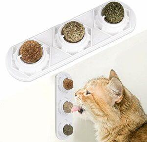 YYOJ Wet Cat Food Jouets à l'herbe à Chat