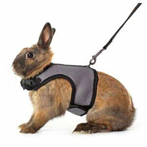Cobayes Cobayes Lapins Hamsters Mesh Pet Laisses Laisses Vêtements Rabbit