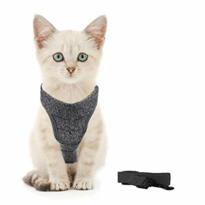 Generic Brands Harnais pour chat avec laisse ultra léger et confortable pour chatons et lapins (M, noir)
