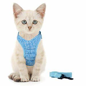 Generic Brands Harnais pour chat avec laisse ultra léger et confortable pour chatons et lapins (S, bleu)