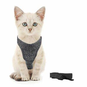 Generic Brands Harnais pour chat avec laisse ultra léger et confortable pour chatons et lapins (S, noir)