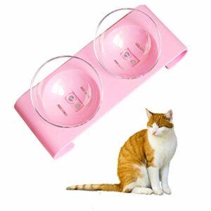 Haokaini Double gamelle pour chien et chat avec support surélevé inclinable à 15 ° – Gamelle transparente pour chat et petit chien