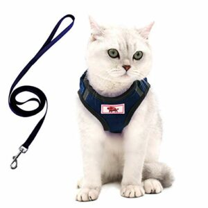 Harnais pour chat avec laisse, harnais pour chaton chiot – Laisse et harnais réglables pour petits chats chiens et chiots avec bandes réfléchissantes (XS)