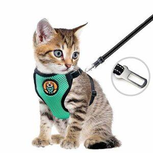 Harnais pour chat – Harnais anti-effraction – Pour chiot et chiot – Avec étui en maille souple réglable – Idéal pour les chiots – Vert menthe