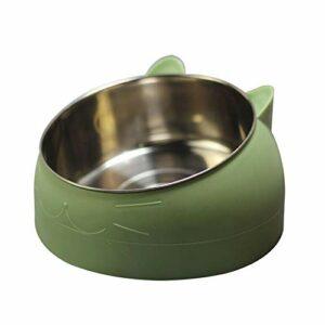 Keneke Gamelle pour chat en acier inoxydable, bol pour chien, double bol pour protéger la colonne cervicale, bol pour chat oblique