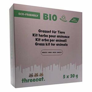 ThreeCat Kit Herbe à Chat – Graines Bio à Faire Pousser pour Animaux – Pack de 5 sachets de 30g (Orge)