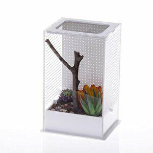 dewdropy Faunabox Mantis Boîte à Nourriture en Acrylique pour Reptiles Transparent